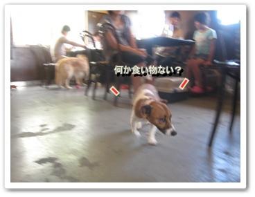 0907020の画 香川県 481