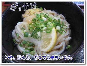 0907020の画 香川県 885