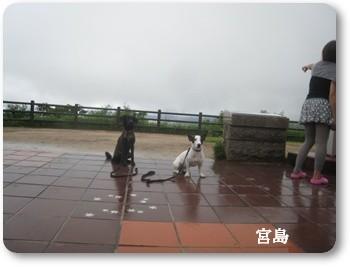 0907020の画 香川県 1003