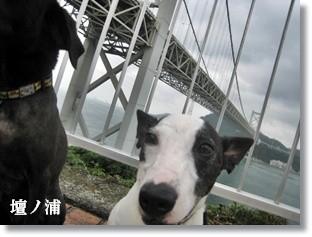 0907020の画 香川県 1057