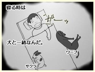安眠ワーブ-1        090801
