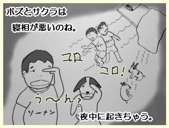 安眠ワーブー2        090801
