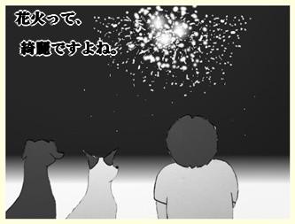 花火ー1                    090809