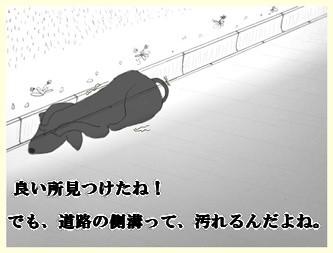 花火ー4               090809