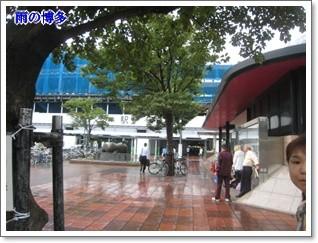 雨だった。        090809