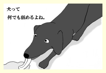 舐めるなワーブー1