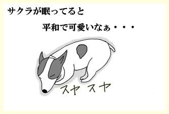 サクラの夢ー1