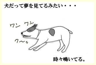 サクラの夢ー2