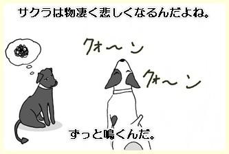 川遊びー3