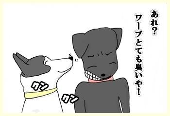 だって犬だもん。