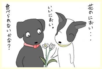 何の花かな?