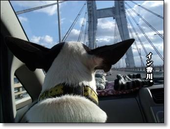 瀬戸大橋を渡る。