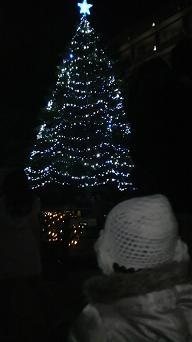 20101204ツリー