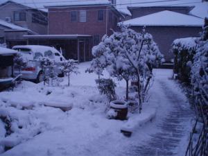 今冬3回目の積雪