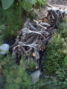 キウイの薪