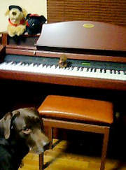 090113_piano.jpg