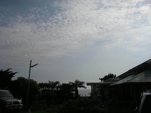 IMGP2566-2.jpg