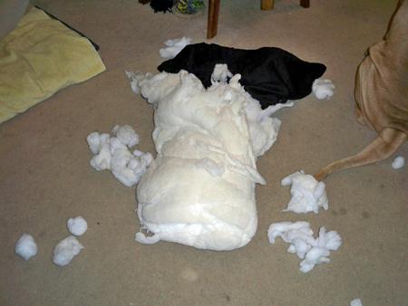 母の枕が・・・