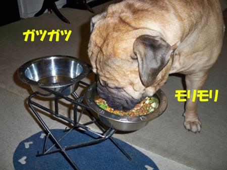 早食いチャンピオン