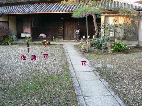 niwa73.jpg