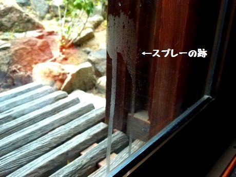 omoya11_20120201155549.jpg