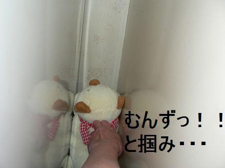 omoya50.jpg