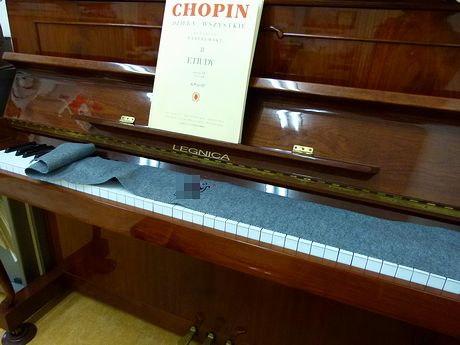 piano1_20111109163300.jpg