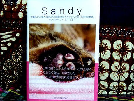 sandy144.jpg
