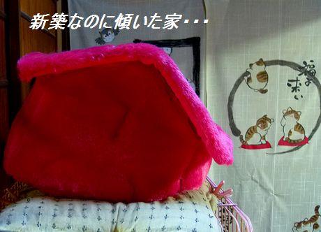 zakka12_20111218215559.jpg