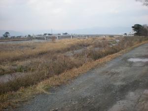小田原 梅まつりに行きました-05