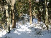 04 登るにつれて雪が多くなる