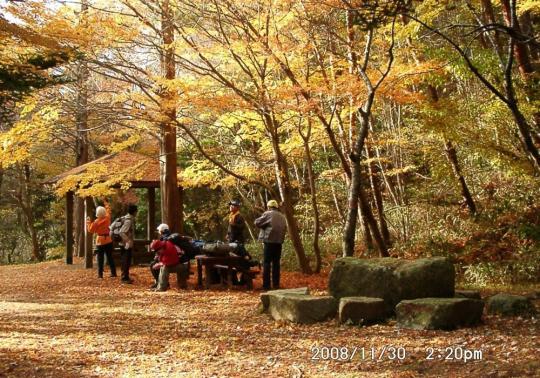 20 穂高湖の楓
