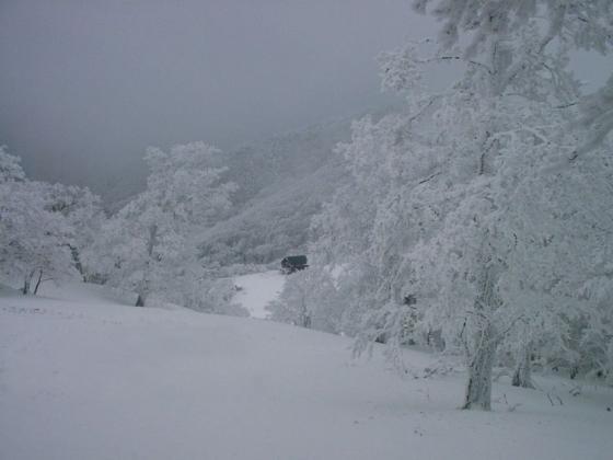 05 三ツ塚への登りから山小屋