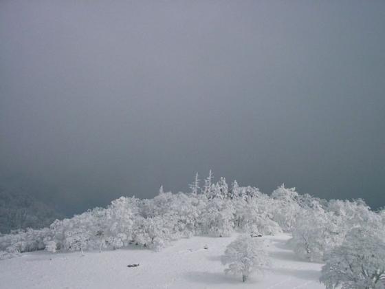 10 雪のオブジェ