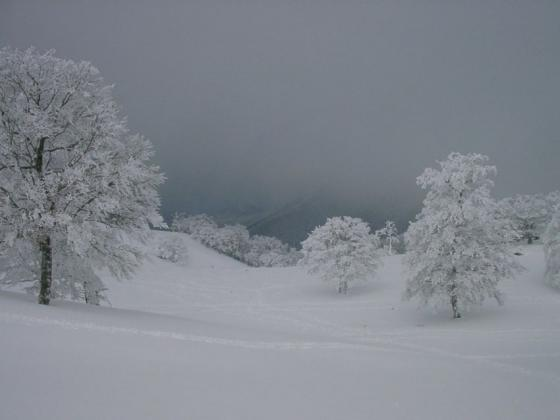 08 雪原散歩