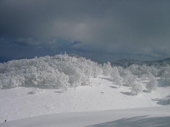 11 雪と光