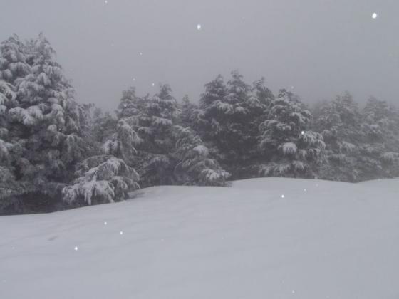 02 雪も降ってます
