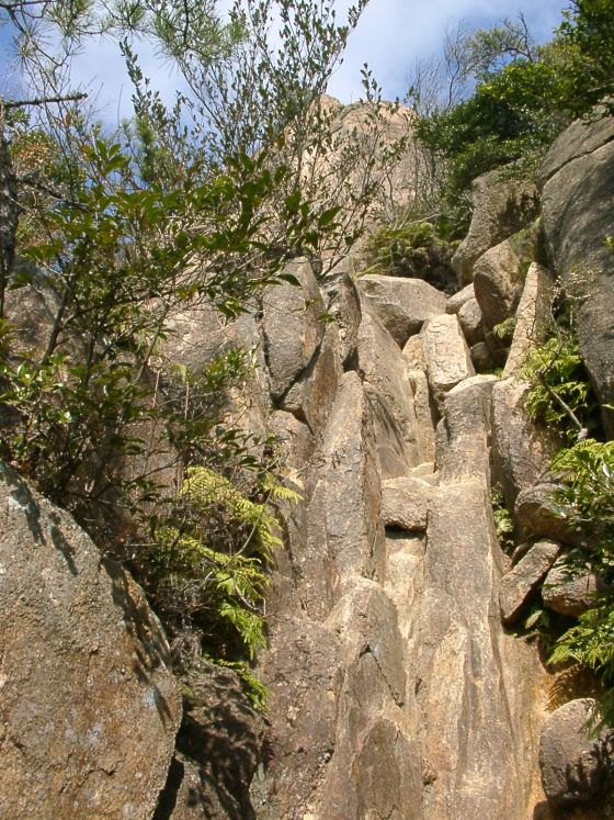 05 岩梯子