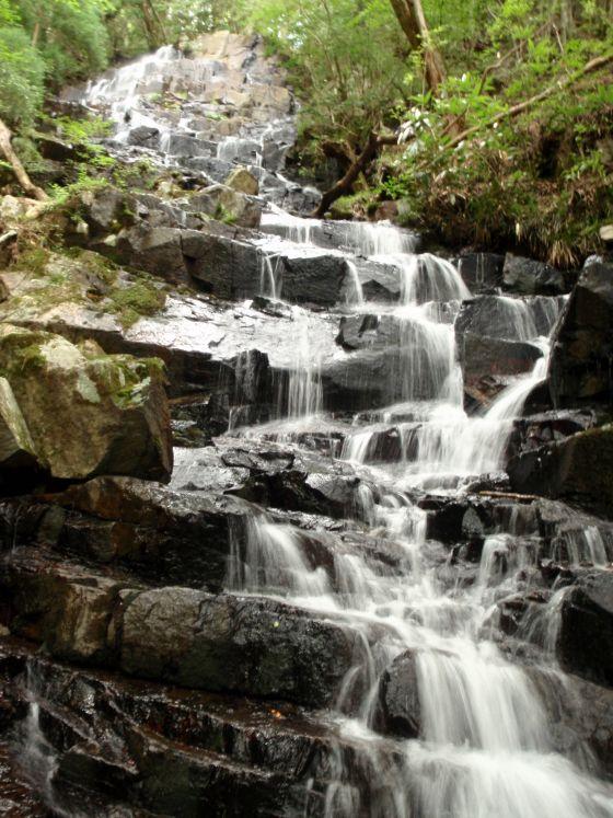 10 白龍の滝