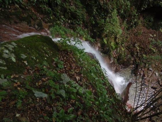 02蟇滝上から