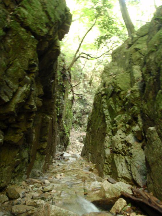08白石滝への道