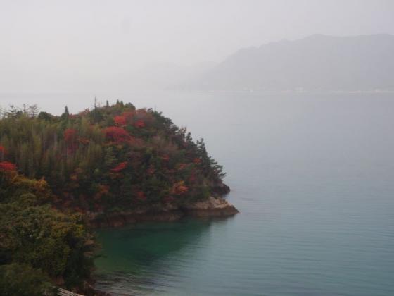 27 伯方島の色付き