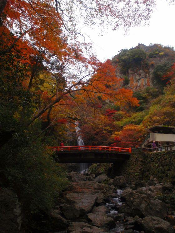 09 箕面滝