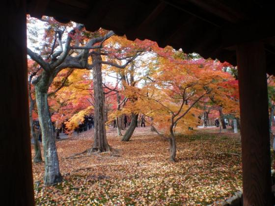 63 東福寺