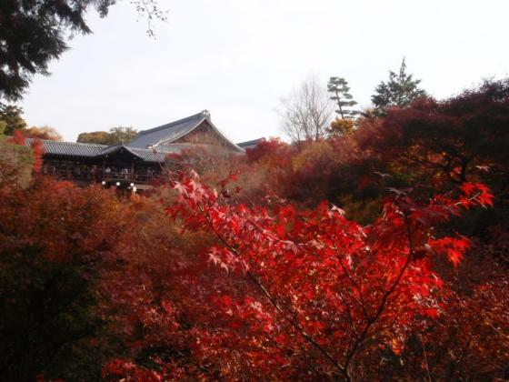 59 東福寺