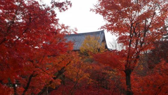 69 東福寺
