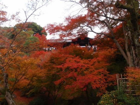 71 東福寺