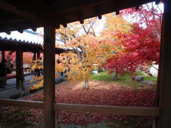 64 東福寺