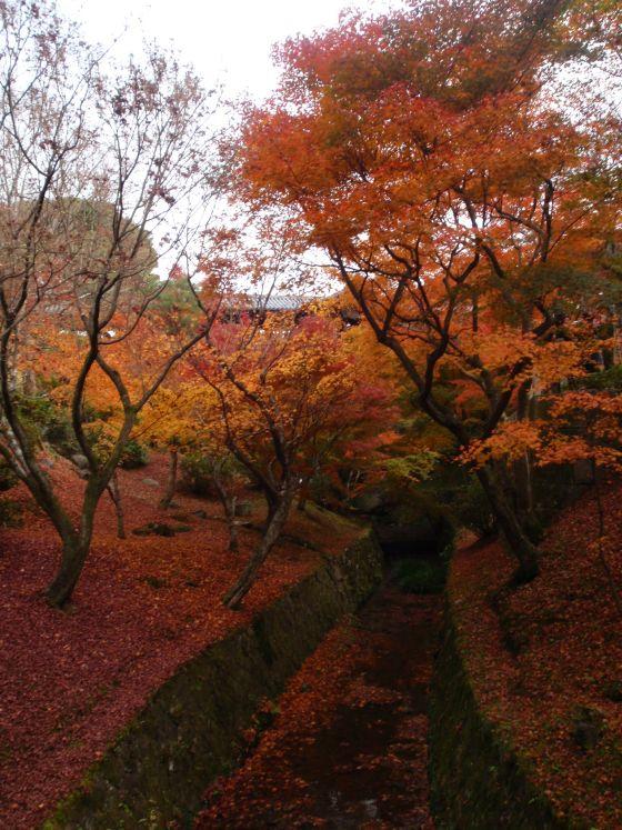 70 東福寺