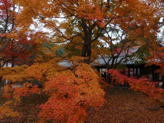 74 東福寺